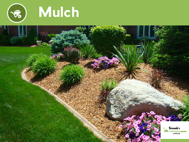 Fernando S Landscaping Services We Offers Professional